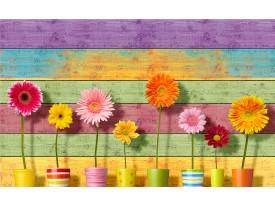 Fotobehang Vlies | Bloemen, Kleurrijk | Geel | 368x254cm (bxh)
