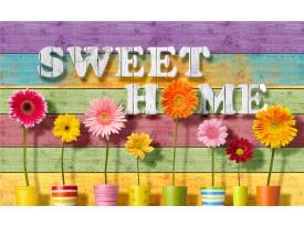 Fotobehang Vlies | Bloemen, Home | Paars | 368x254cm (bxh)