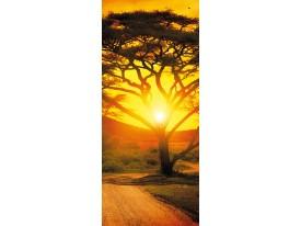 Fotobehang Natuur, Zonsondergang | Oranje | 91x211cm