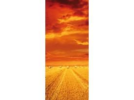 Deursticker Muursticker Landelijk | Oranje | 91x211cm