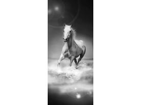 Fotobehang Paarden | Zwart, Wit | 91x211cm