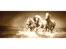 Fotobehang Paarden | Sepia | 250x104cm