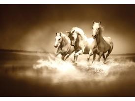 Fotobehang Vlies | Paarden | Sepia | 368x254cm (bxh)
