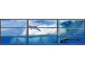 Fotobehang Vlies Dolfijnen | Blauw | GROOT 624x219cm