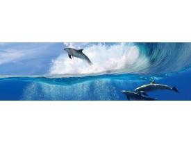 Fotobehang Vlies Dolfijnen | Blauw | GROOT 832x254cm
