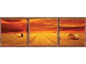 Fotobehang Vlies Natuur | Oranje | GROOT 624x219cm