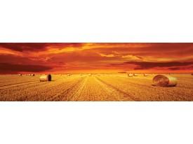 Fotobehang Vlies Natuur   Oranje   GROOT 624x219cm
