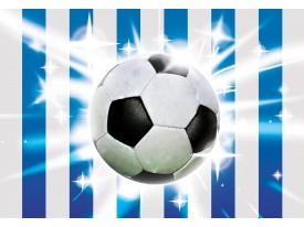 Fotobehang Vlies | Voetbal | Blauw, Wit | 368x254cm (bxh)