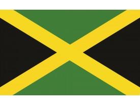 Fotobehang Vlag | Groen, Zwart | 152,5x104cm