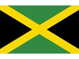 Fotobehang Vlies | Vlag | Groen, Zwart | 368x254cm (bxh)