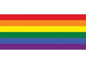 Fotobehang Vlag | Geel, Oranje | 250x104cm