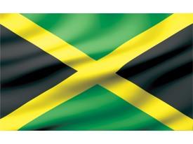 Fotobehang Vlies | Vlag | Zwart, Groen | 368x254cm (bxh)