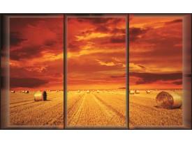 Fotobehang landelijk | Rood | 208x146cm