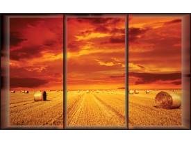 Fotobehang Vlies | landelijk | Rood | 368x254cm (bxh)