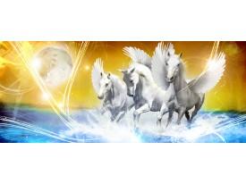 Fotobehang Paarden   Blauw, Geel   250x104cm
