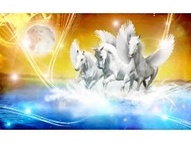 Fotobehang Vlies | Paarden | Blauw, Geel | 368x254cm (bxh)