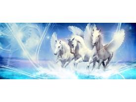 Fotobehang Paarden | Blauw | 250x104cm