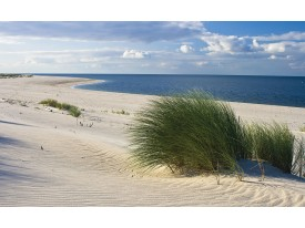 Fotobehang Strand | Blauw | 104x70,5cm
