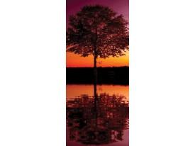 Deursticker Muursticker Natuur | Oranje | 91x211cm