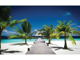 Fotobehang Tropisch   Blauw, Groen   416x254