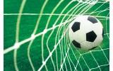 Fotobehang Vlies | Voetbal | Groen, Wit | 368x254cm (bxh)