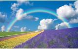 Fotobehang Vlies | Natuur | Blauw | 368x254cm (bxh)