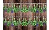 Fotobehang Vlies | Landelijk, Hout | Bruin, Groen | 368x254cm (bxh)