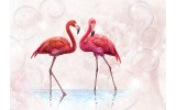 Fotobehang Vlies   Flamingo   Rood, Roze   368x254cm (bxh)