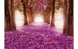 Fotobehang Vlies | Natuur | Paars, Roze | 368x254cm (bxh)