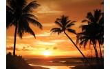 Fotobehang Vlies | Strand | Oranje, Zwart | 368x254cm (bxh)