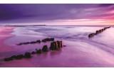 Fotobehang Strand, Zee | Paars | 312x219cm