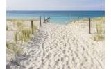 Fotobehang Vlies   Strand   Blauw, Geel   368x254cm (bxh)