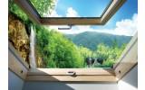 Fotobehang Vlies | Natuur, Raam | Groen | 368x254cm (bxh)