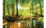 Fotobehang Vlies | Bos | Bruin, Groen | 368x254cm (bxh)