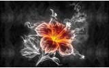 Fotobehang Vlies | Bloemen | Zwart, Wit | 368x254cm (bxh)