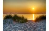 Fotobehang Vlies | Strand | Geel, Oranje | 368x254cm (bxh)