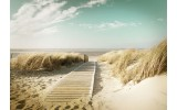 Fotobehang Vlies | Strand  | Groen, Bruin | 368x254cm (bxh)