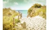 Fotobehang Vlies | Strand  | Groen, Geel | 368x254cm (bxh)