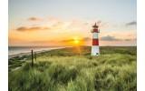 Fotobehang Vlies | Vuurtoren | Groen, Geel | 368x254cm  (bxh)