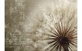 Fotobehang Vlies   Paardenbloem   Bruin   368x254cm (bxh)