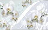 Fotobehang Orchidee, Bloemen | Wit | 312x219cm