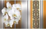 Fotobehang Papier Bloemen, Orchidee | Wit, Oranje | 368x254cm