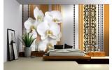 Fotobehang Bloemen, Orchidee | Wit, Oranje | 312x219cm