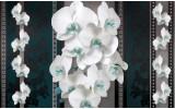 Fotobehang Vlies | Bloemen, Orchideeën | Turquoise | 368x254cm (bxh)