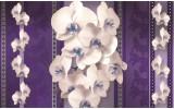 Fotobehang Vlies   Bloemen, Orchideeën   Paars   368x254cm (bxh)