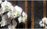 Fotobehang Bloemen, Orchideeën | Wit | 208x146cm