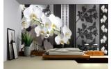 Fotobehang Bloemen, Orchideeën | Grijs | 312x219cm