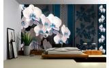 Fotobehang Bloemen, Orchideeën | Blauw | 416x254