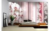 Fotobehang Bloemen, Orchideeën | Roze | 312x219cm