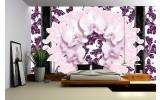 Fotobehang Bloemen, Orchideeën | Paars | 312x219cm